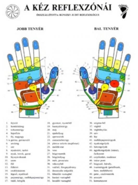 Bánszky Judit: A kéz reflexzónái - Két oldalas A4